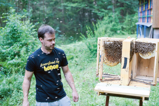 Beekeeper Erik Luznar with a display hive in the Draga Valley in Slovenia (photo © Rudolf Abraham).