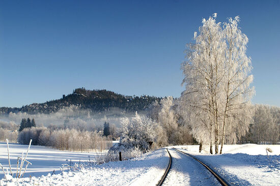Winter in the hills of northern Bohemia (photo © Tomas Simek).